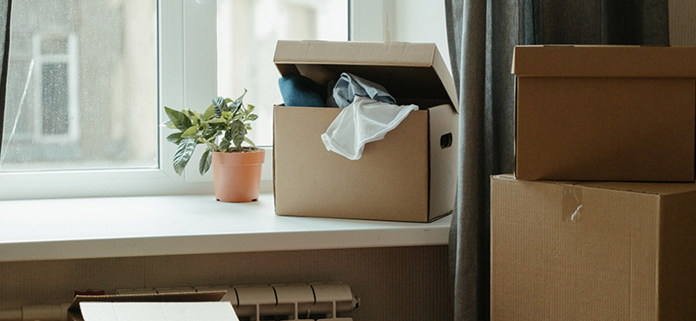 The Ultimate Guide To Adulting: Moving Out Edition
